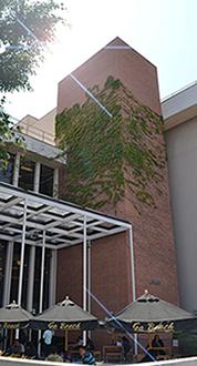 CSULB Courtyard