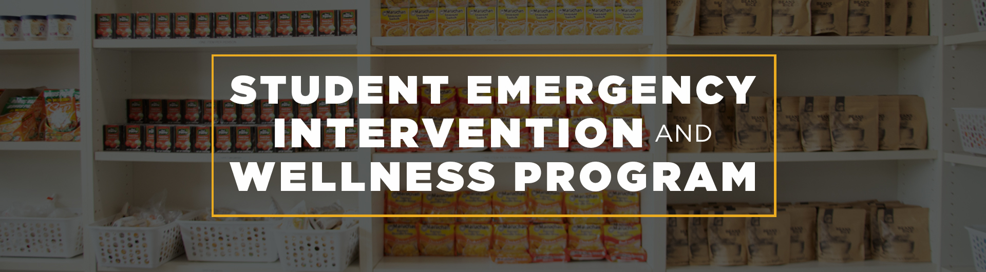 Student Emergency Intervention And Wellness Program Banner