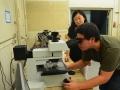 examining_specimen2